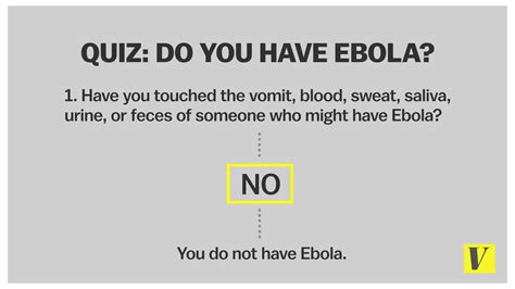 what you ve done with the place the apartment 9 questions you were afraid to ask about ebola vox