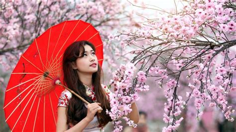wallpaper hd umbrella girl asian girl flowers umbrella wallpapers hd download free