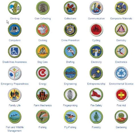 sycamore district merit badge counselors pin required merit badges for eagle on pinterest