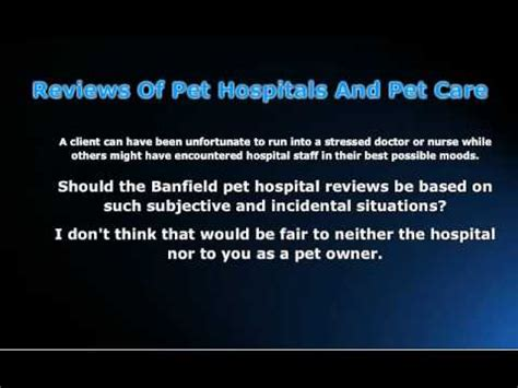 should i let my eat grass banfield pet hospital ask a vet why does my eat grass funnydog tv