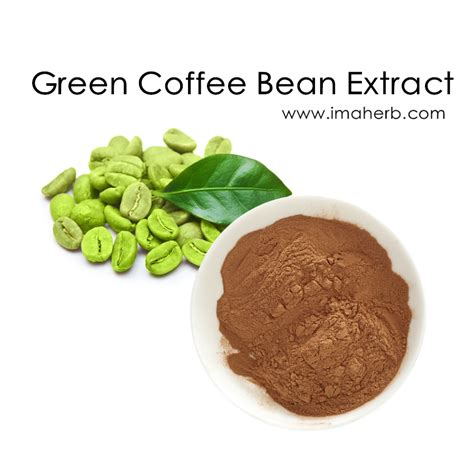 Handle Green Coffee Bean Extract green coffee bean extract chlorogenic acid powder