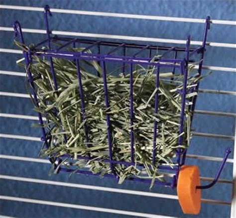 Hay Rack For Guinea Pig Cage by Guinea Pig Hay And Grass