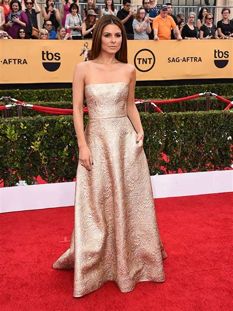 2008 Screen Actors Guild Awards The Carpet by Photos 2015 Screen Actors Guild Awards Carpet