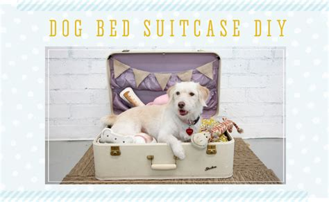 suitcase dog bed 12 pawsome diy dog beds the craftiest couple