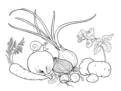 dibujo alimentos dibujos de alimentos 174 para colorear e imprimir