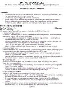 Project Manager Career Objective Resume For Someone Seeking A Job As An E Commerce Project