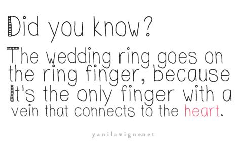 Wedding Event Quotes by Wedding Day Quotes Quotesgram