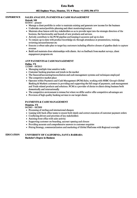 payments management resume sles velvet