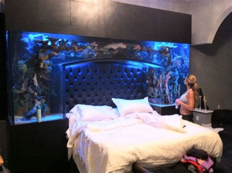 fish tank bed headboard evelyn lozada chad ochocinco sleep with the fishes literally