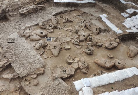 mari archaeology bronze age wine cellar found in israel heritagedaily