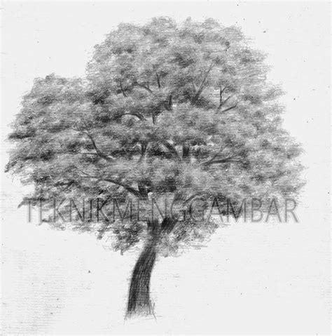 tutorial menggambar pohon dengan pensil 25 ide terbaik tentang menggambar dengan pensil di