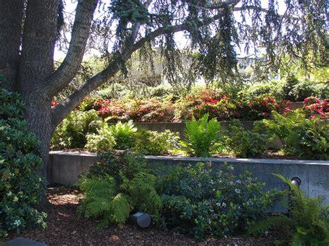Oakland Botanical Garden Oakland Museum Of California And Gardens