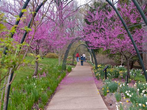 21 of the best botanical gardens to visit this