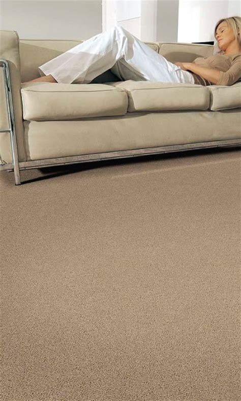 ecohome improvement wool carpet