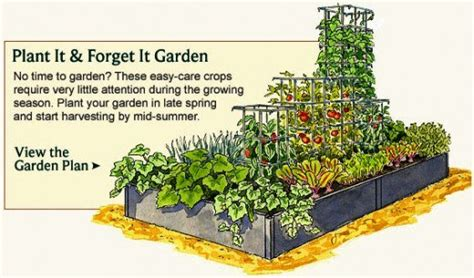 home garden layout vegetable garden planner layout design plans for small