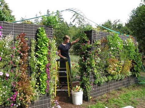 urban green  blog   outdoor vertical garden
