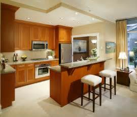 Open Kitchen Cabinets Ideas Open Kitchen Design Ideas With Living And Dining Room