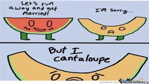 cantaloupe pun melon puns ftw by xv1p3rx meme center