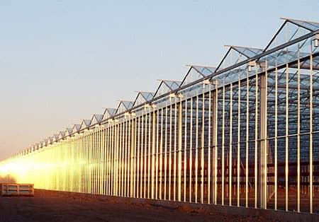 venlo glass greenhouse large glasshouse richel group