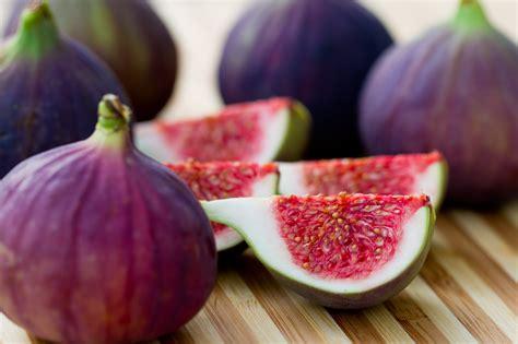 best fig discover fresh figs farmers almanac