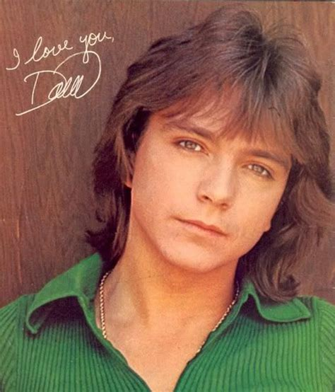 looking for the shag haircut of the70 s 216 best david cassidy images on pinterest david cassidy