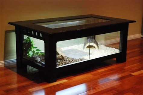 coffee table reptile terrarium 1000 images about reptile cages on reptile
