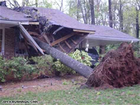 S Tree Fell On House by Tree Splits House In Half After Steps Outside Cnn