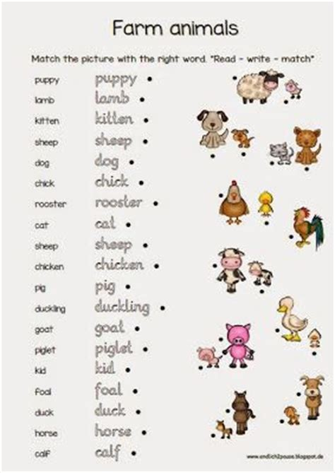 Db Slide Learn Flash Cards Animals 248 best images about englischunterricht on