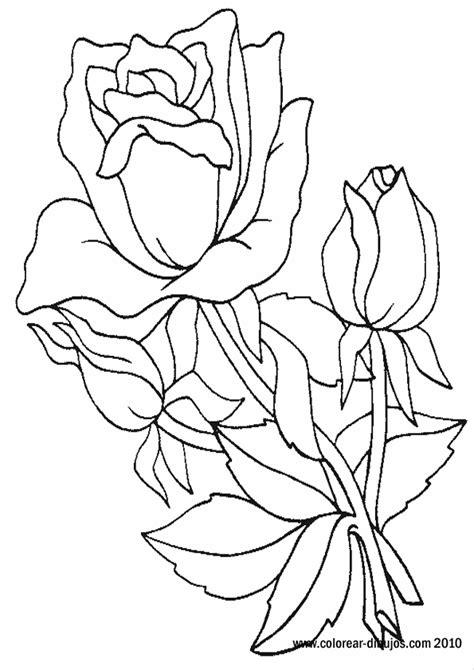 imagenes bonitas para dibujar y regalar dibujos de rosas para pintar y regalar el d 237 a de san