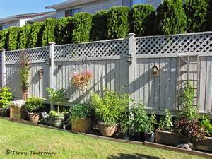 Fence Ideas For Small Backyard Backyard Fence Line Jpg Photo Terry Thormin Photos At Pbase