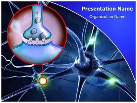 powerpoint templates free neurology download editabletemplates com s premium and cost