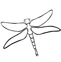 dragonfly coloring pages dragonfly animals coloring pages ideas coloring