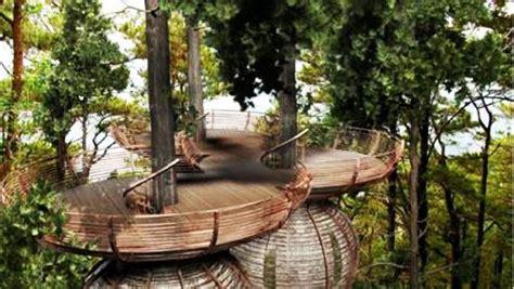 tree perch  lookout deck ideas adding fun diy