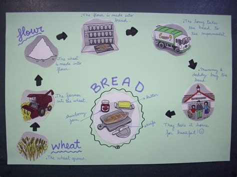 Describe How A Lava L Works by From Wheat To Bread Fish And Chips Angl 232 S Al Ce