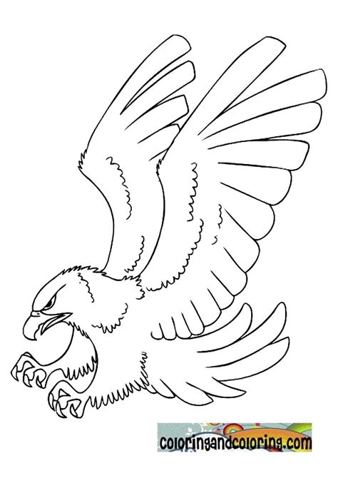 coloring page eagle free coloring pages of drawings eagle