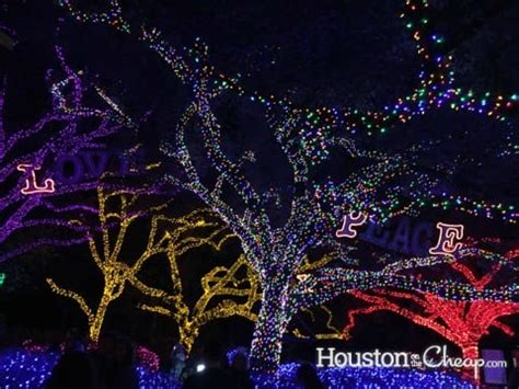 cheap lights houston tx day 4 of 12 days of giveaways houston zoo lights