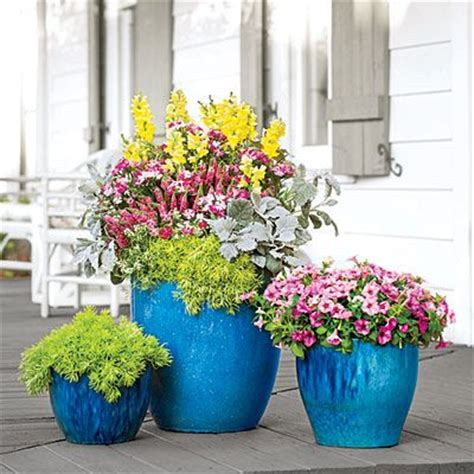 southern living container gardening container gardening southern living and gardening on