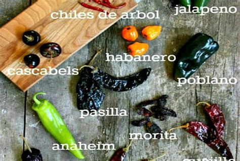 essential chili peppers  mexican cooking recipe