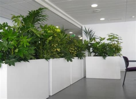 indoor planter ideas innovative indoor planter design ideas interior design