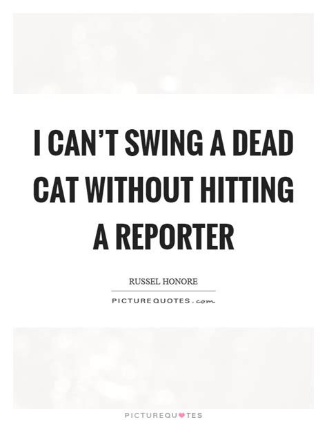 swinging a dead cat i can t swing a dead cat without hitting a reporter