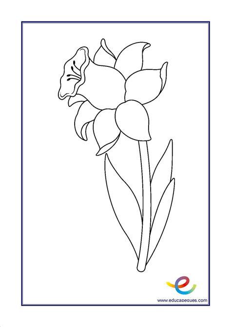imagenes flores exoticas para colorear imagenes de flores infantiles para colorear