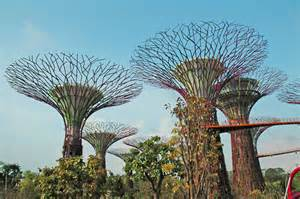 Landscape Structures Singapore Singapore Supertrees In The Marina South Gardens