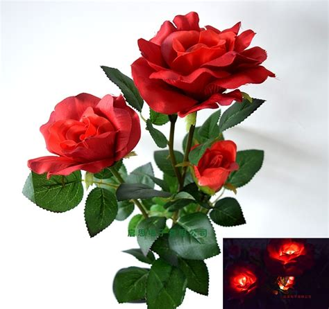 eternal roses popular eternal roses buy cheap eternal roses lots from