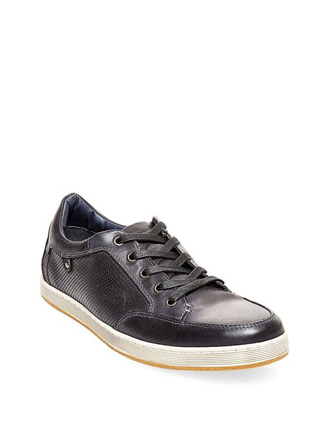 leather sneakers for steve madden partikal perforated leather sneakers in black