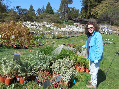 Regional Parks Botanic Garden Calling All Green Thumbs And Helping Get Involved With A Gardening Organization Near You