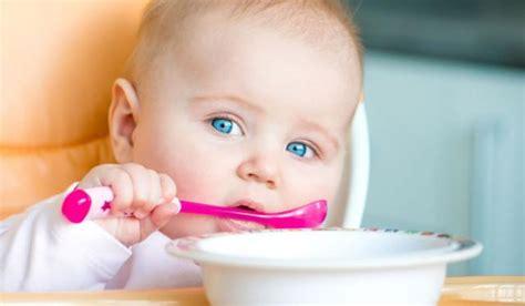 alimentazione neonato 8 mesi svezzamento neonati e bambini bimbisani e belli