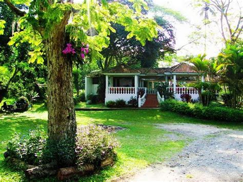 beautiful garden house  alpin funny picture