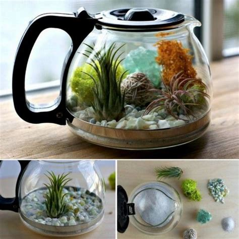 kitchen window terrarium 25 best ideas about kitchen window sill on pinterest