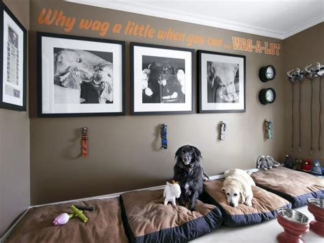 dog space in house best 25 dog spaces ideas on pinterest dog rooms dog