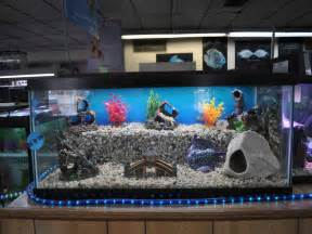 Home Decoration Cool Aquarium Design In Home Office Aquarium Design